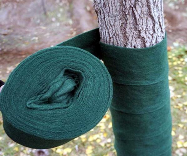 乌兰察布树木植物绷带供应商